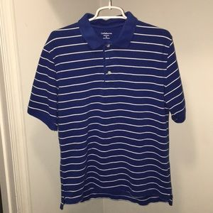 Blue and White Stripped Polo